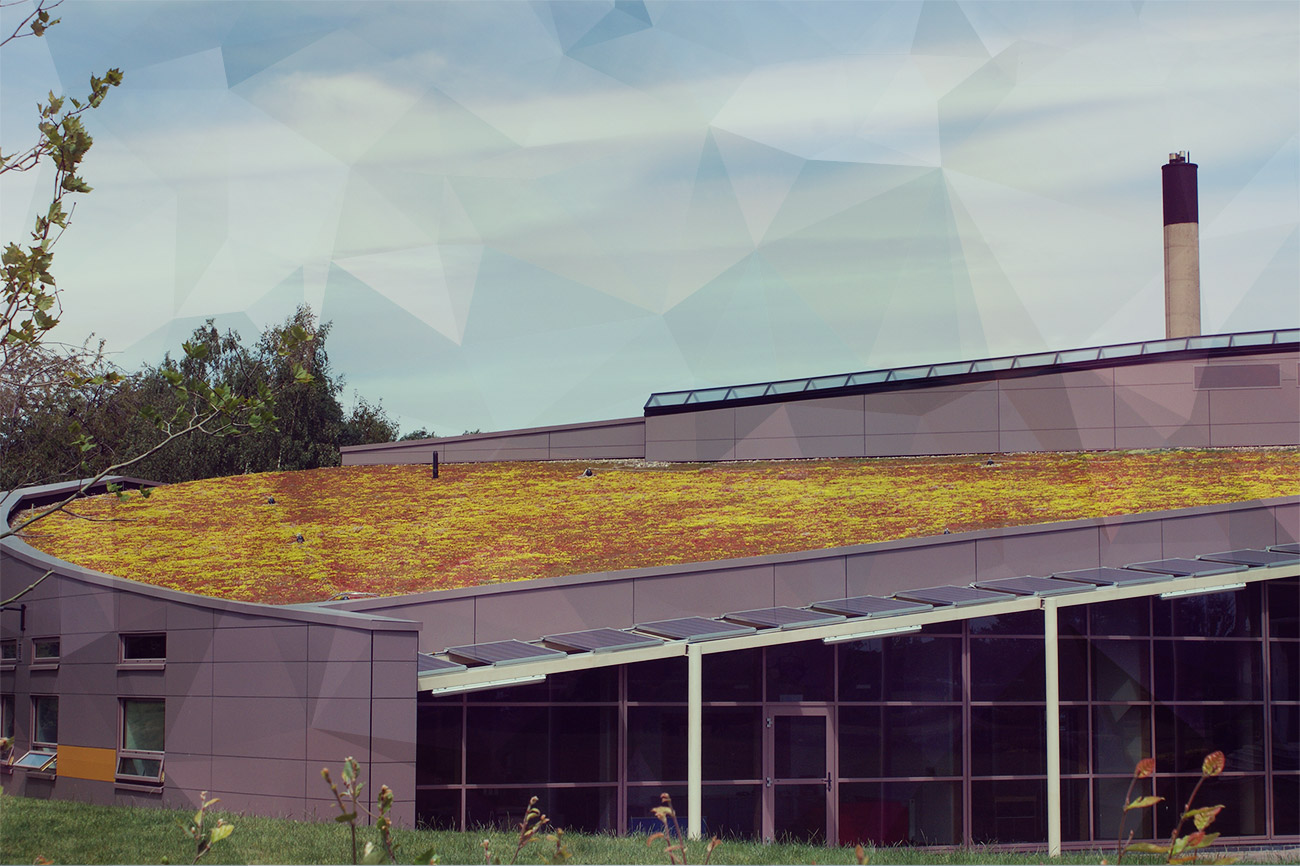 Glyndwr University's Centre for Creative Industries